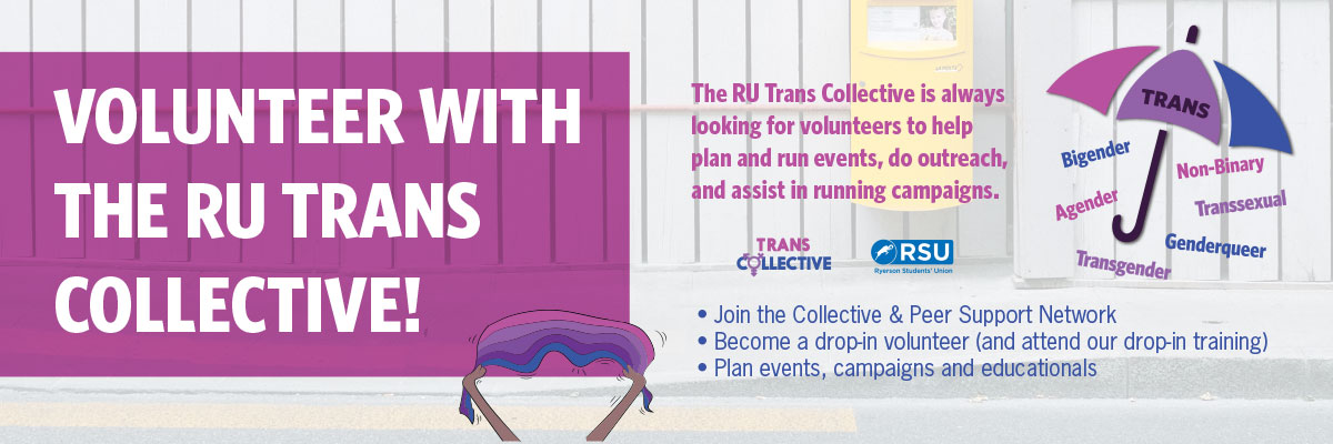 Volunteer with the Trans Collective